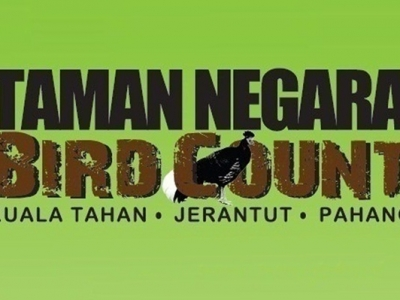 TAMAN NEGARA BIRD COUNT: MARCH 13-15, 2020