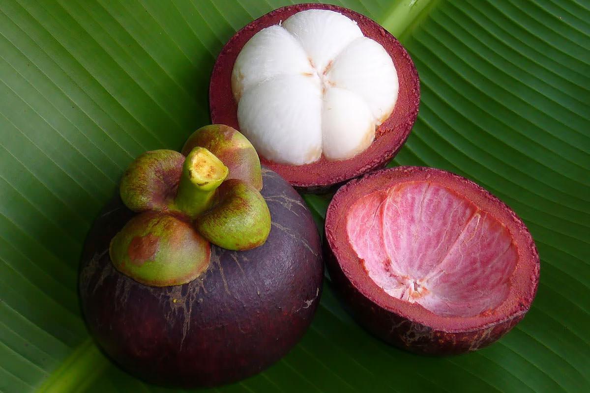 под потоотводящее можно ли вывозить фрукты из мальдив одним частым заблуждением