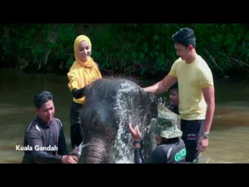 VISIT PAHANG YEAR 2017-OFFICIAL THEME SONG