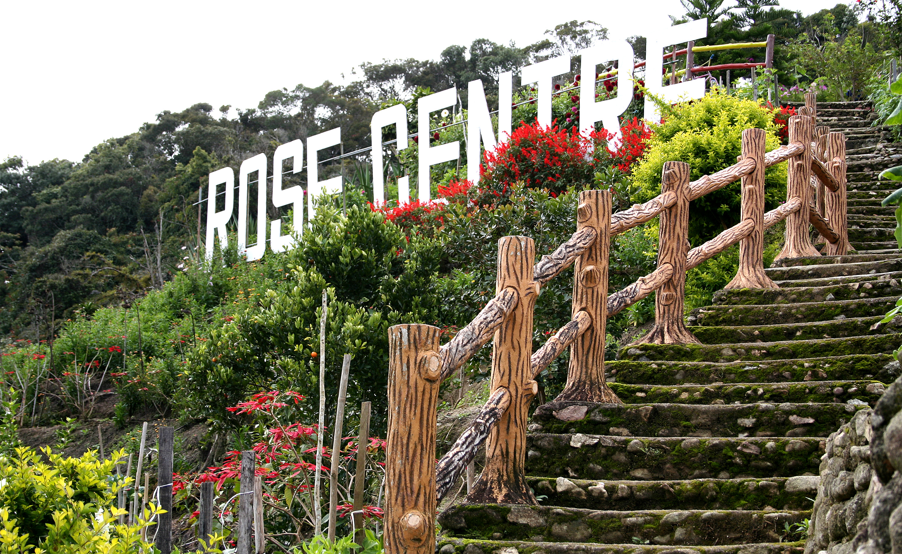 Official Portal Of Tourism Pahang Farms Nurseries